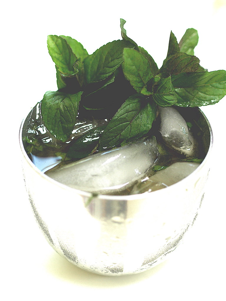 Kentucky Derby Julep