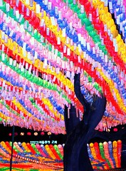 Lotus Lanterns 2008 (Nancie (Ladyexpat)) Tags: buddhism korea seoul colorexplosion themoulinrouge firstquality lifeasiseeit supershot golddragon platinumphoto colorphotoaward jogyesatemple diamondclassphotographer flickrdiamond ladyexpat artlegacy theperfectphotographer lotuslanternf