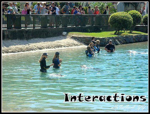 Sea World : Interactions