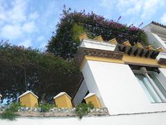 Sville, quartier Santa Cruz (mhp75) Tags: europe espagne sville andalousie