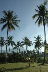 Uitzicht vanuit villa