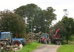 Timber (bryanilona) Tags: friends scotland fife timber logs vivid soe platinumphoto roughtrack thatsclassy overtheexcellence betterthangood goldstaraward flickrsmasterpieces