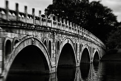 B & W: Bridge (Akaal Studio) Tags: park bridge blackandwhite white black lensbaby japanesegarden is singapore all rainyday or it using rights illegal be them written without f8 reserved permission shall authorities relevant reported nikond60 modifying lensbabycomposer