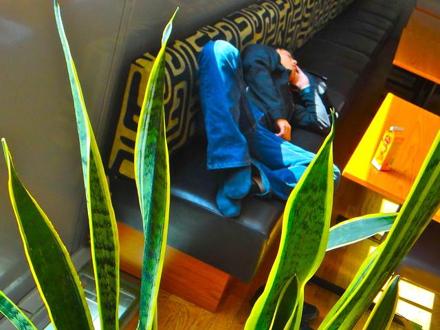 Sleeping / Oslo Airport