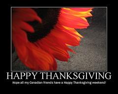 . (annkelliott) Tags: autumn orange canada fall poster fdsflickrtoys motivator sunflower soe happythanksgiving annkelliott shieldofexcellence img3786 frhwofavs