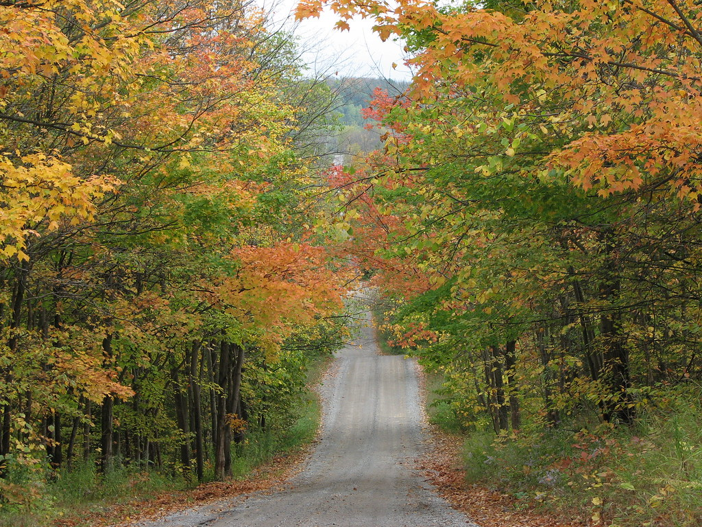 Fall on the backroads