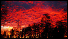 Sunset Sweden Bors (T Sderlund) Tags: november autumn sunset red sky sun rot fall nature set clouds landscape nikon scenery europa europe flickr sweden schweden herbst north norden skandinavien swedish explore 100views 200views sverige 500views d200 landschaft hst 1000views solnedgng landskap redsunset rd naturesfinest sobeautiful 333views redclouds 2000views flickrexplore bors nikond200 2500views supershot 1300views 1800views 1500views swedennature 1400views 1600views 1700views 35faves 100comments 1900views golddragon mywinners bygd redheaven platinumphoto 2100views superbmasterpiece sandared diamondclassphotographer flickrdiamond 50comments theunforgettablepictures sjuhrad goldstaraward flickrexcellentphotos scenicsnotjustlandscapes exquisiteimage swedensky