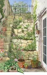 Pamela's Garden