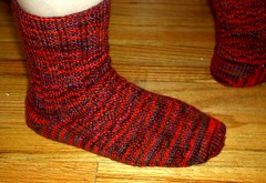 Toe Up Socks in Schaefer Lola - Close Up Side View