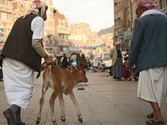 Eid mubarak! (__klaus) Tags: market yemen sanaa suq jemen eiduladha opferfest