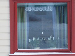 Norwegian Window