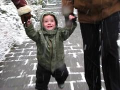 midas loopt in de sneeuw