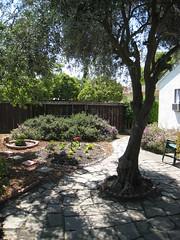 Jesse's secret garden