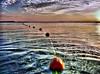 Fishnet (HDR) (aZ-Saudi) Tags: sea sky cloud sun beach clouds sunrise coast interesting fishing fishnet arabic yarn oasis saudi arabia شمس hdr hunt ksa شبكة alhasa artisticexpression غيوم بحر شروق سمك supershot صياد صباح شباك ازرق mywinners صيد arabin سكمة ِarabs