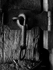 The Latch (SteveFromOhio) Tags: macromonday bw blackandwhite latch barn post old gate wood hasp door cattle livestock