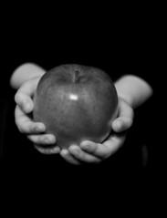 No, She Isn't A Vampire. Thanks For Asking! (Jenn Long) Tags: bw white black apple fruit hands nikon child d700