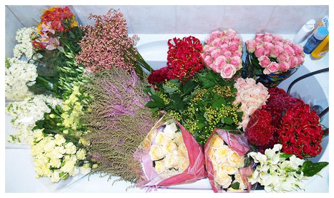 Małgorzata & Daniele – kwiaty, kwiaty, kwiaty