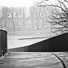 take a walk on the bright side (city/human/life (very busy)) Tags: park bridge trees light people blackandwhite bw sun sunlight white black tree sunshine fence river germany