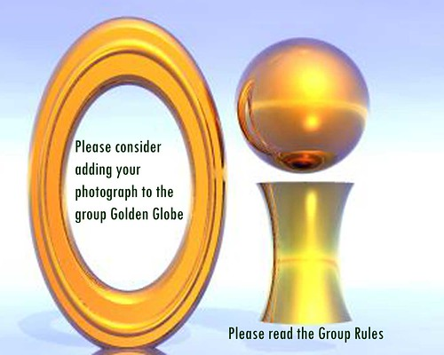 Golden Globe 1 Awards