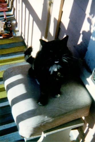 raoul, front porch, 1998