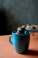 Coffee cookies and hazelnut