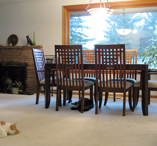 New dining room table. With cats.