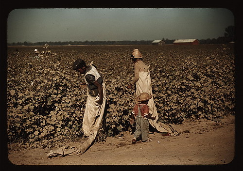 Day laborers picking cotton, near Clarksdale, Miss. (LOC) by The Library of Congress.