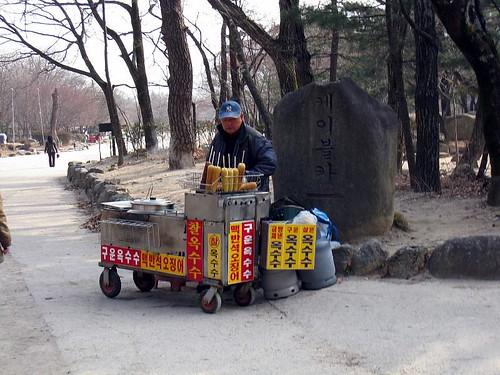 Korea (492)