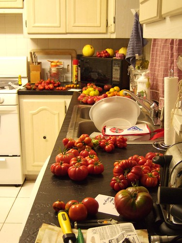 15 lbs of tomatoes in my kitchen.