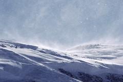 Apocalypse Snow (Syd Zorn) Tags: snow apocalypse