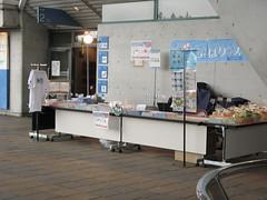 080419 日本水泳選手権 物販ブース 日本水泳連盟