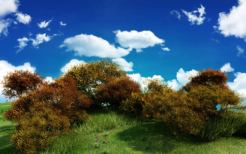 01202_woodlandhill_2560x1600.jpg