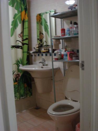 Our Tiny Tropical Bathroom :)