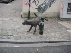 Dog Pissing