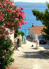 The way to the sunny beach.... (Bea Kotecka *Come back :) *) Tags: sea holidays europe croatia olympus adriatic hugsandkisses omis littlestories sp350 mywinners waytobeach middledalmacja betterthangood theperfectphotographer beakotecka picswithsoul