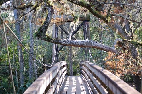 little suspension bridge