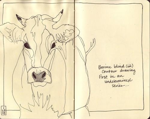 Bovine Blind Contour 1