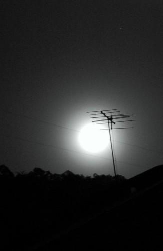 sang bulan