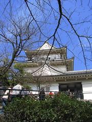 Odawara Castle (Aliaaaaa) Tags: flowers castle japan march blossoms odawara 2008 hakone alia plumblossoms odawaracastle aliaaaaa