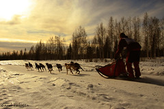 The Freedom (Akfirebug) Tags: alaska sunsets fairbanks runningaway akfirebug falcetta diamondclassphotographer