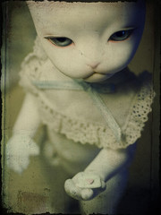 love letter (.kimmika) Tags: portrait cat vintage doll kitty textures bjd dollfie baha tamron90mm pipos kimmika canon40d themunchkincat