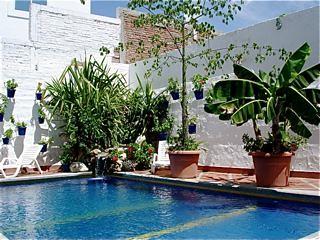 multi-currency-Ecuador-beach-property-for-sale-backyard