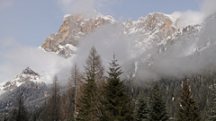 Fogs in thinning after a snowfall (ab.130722jvkz) Tags: italy trentino alps easternalps dolomites palagroup mountains snowfall winter