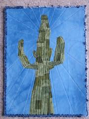 sajuaro cactus