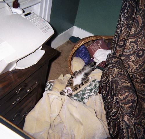 Fuzzy Sleeping