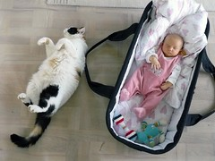 Alike? (Naztrida) Tags: sleeping pet baby girl cat sleep rollover
