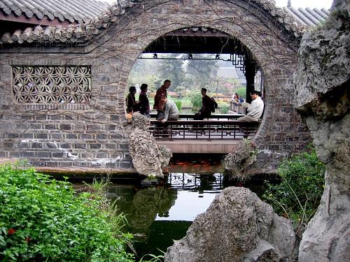Chengdu Koi