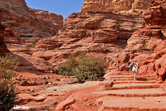 Jordan-18C-067 - 800 Stairs (view large) (archer10 (Dennis) (53M Views)) Tags: travel holiday colors ancient sandstone ruins colours petra yucatan free jordan dennis monuments tombs romans 2010 khazneh iamcanadian worldtravels nabataeans dennisjarvis archer10 dennisgjarvis