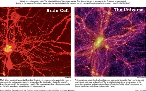 Thumb A Neuron and the Universe can look-alike