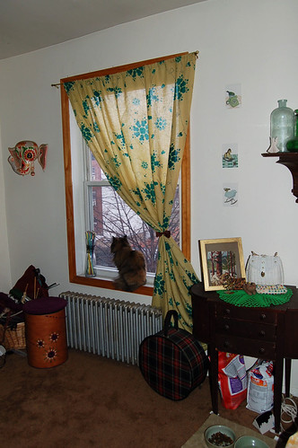 Noa Curtain + Pacha